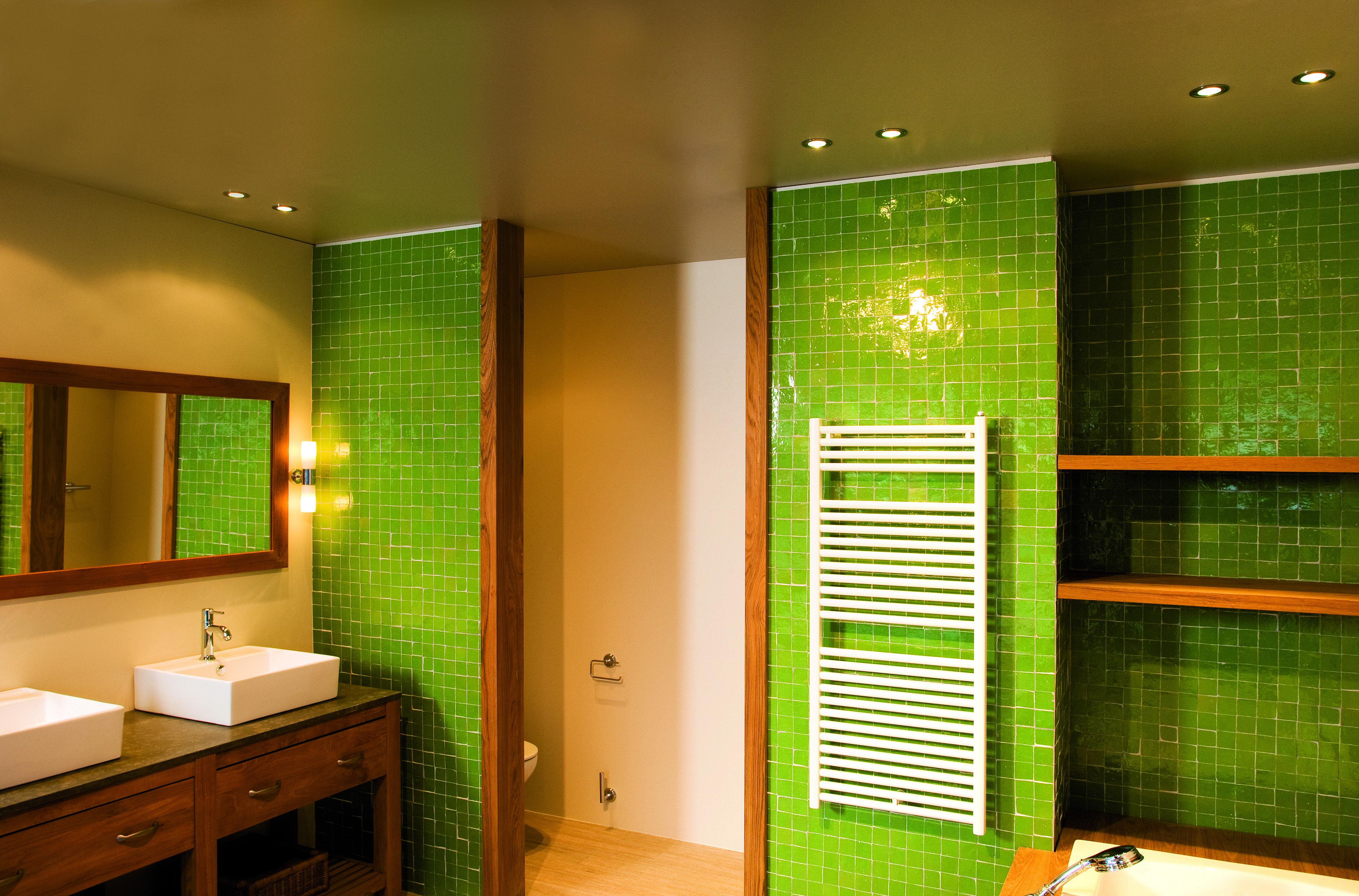 Beautiful green bathroom. Downlights by TAL: Clio.   TAL ...