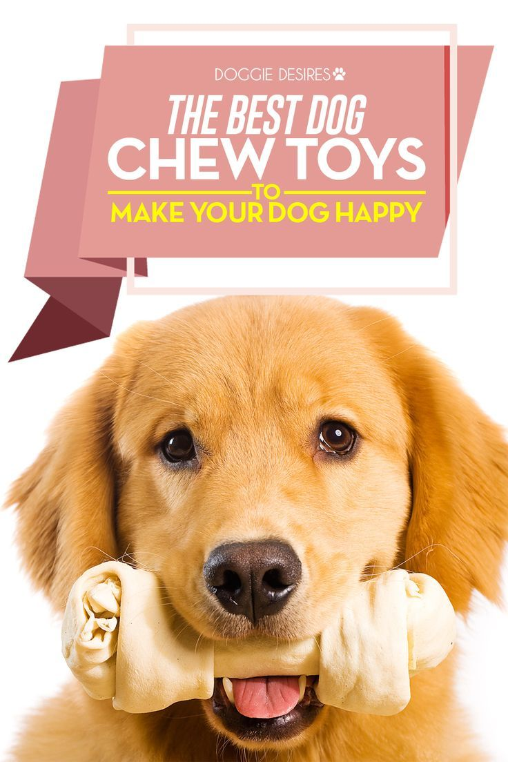 The Best Dog Chew Toys To Make Your Dog Happy Dog Chews Dog