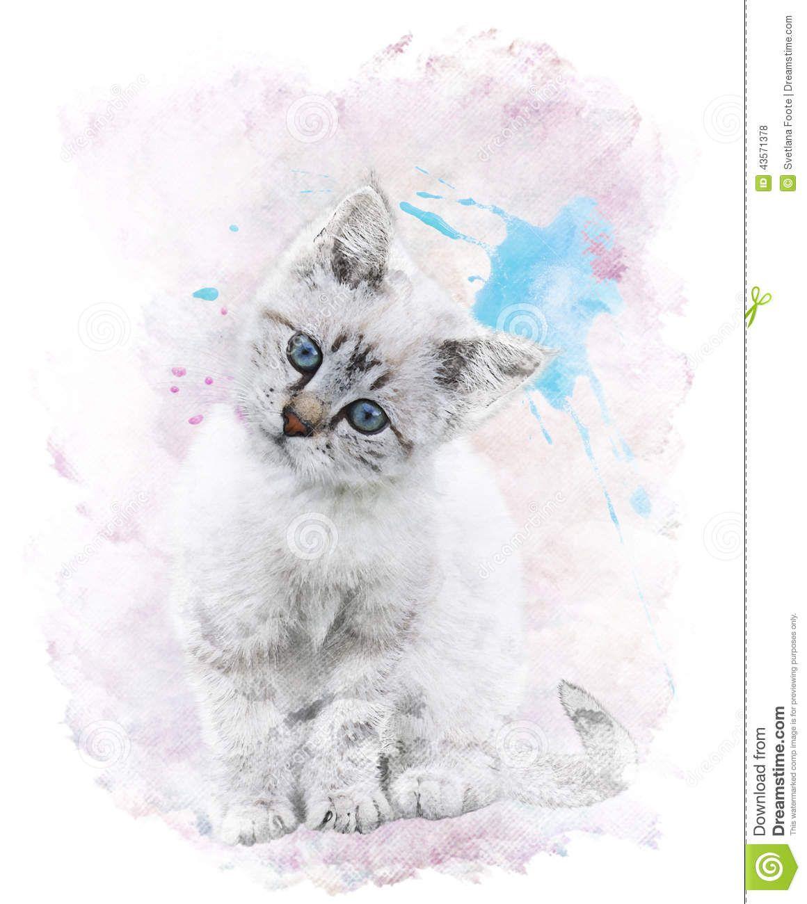 Watercolor Image Of White Kitten Watercolor Images White Kittens Stock Illustration