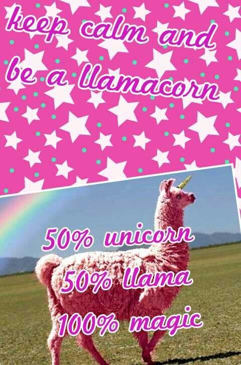 11+ Llama unicorns information