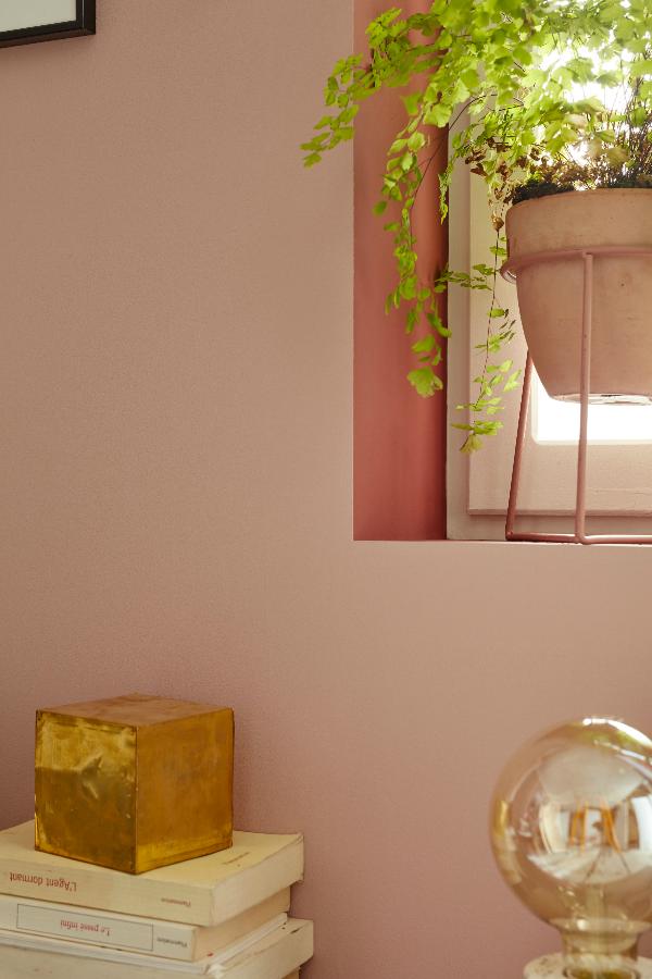 Trois Idees Pour Peindre Un Salon En Rose Et Brun Idees Pour La Maison Deco Peinture Rose
