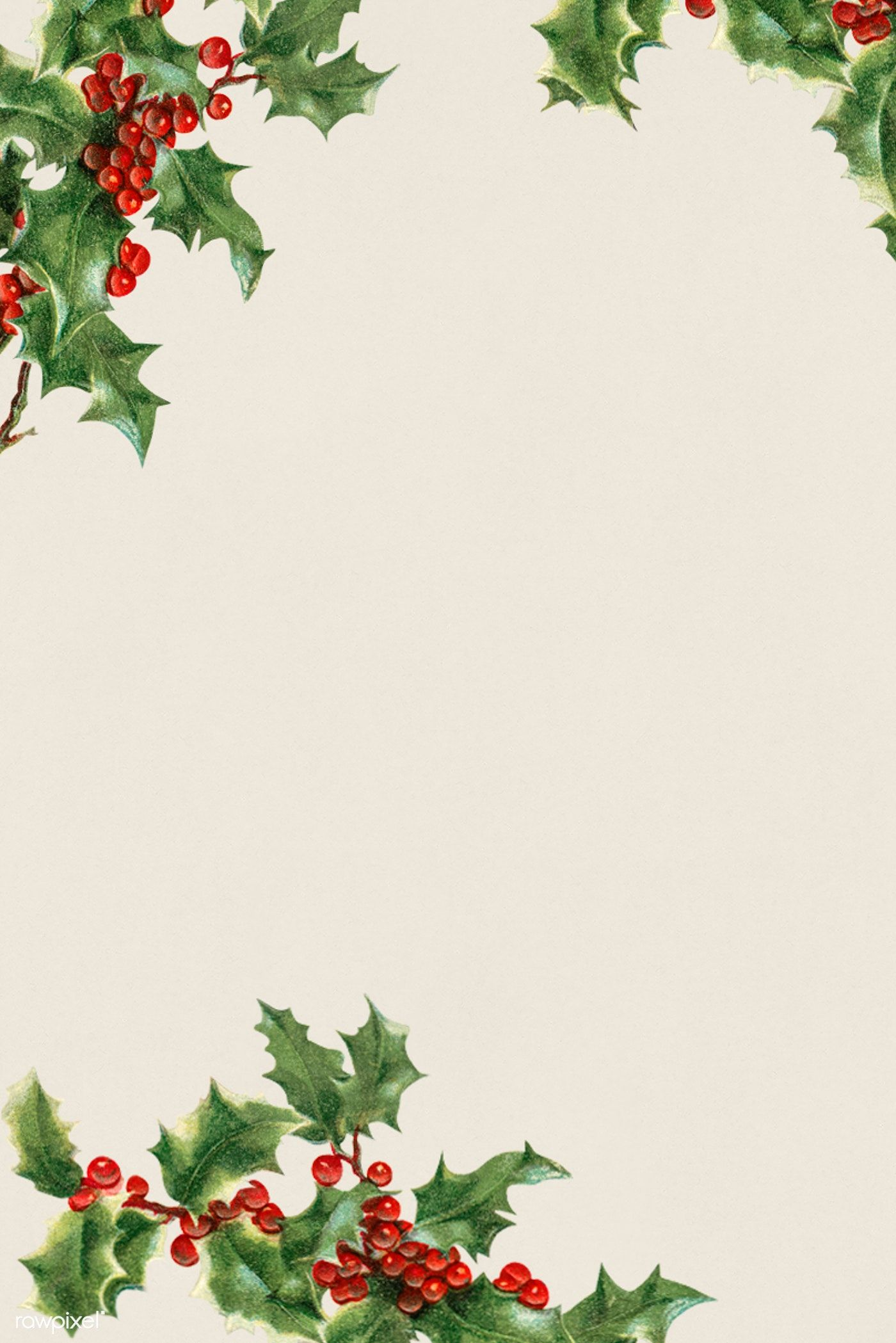 Download Premium Illustration Of Blank Holly Leaves Frame Illustration Cute Christmas Wallpaper Christmas Frames Christmas Card Design