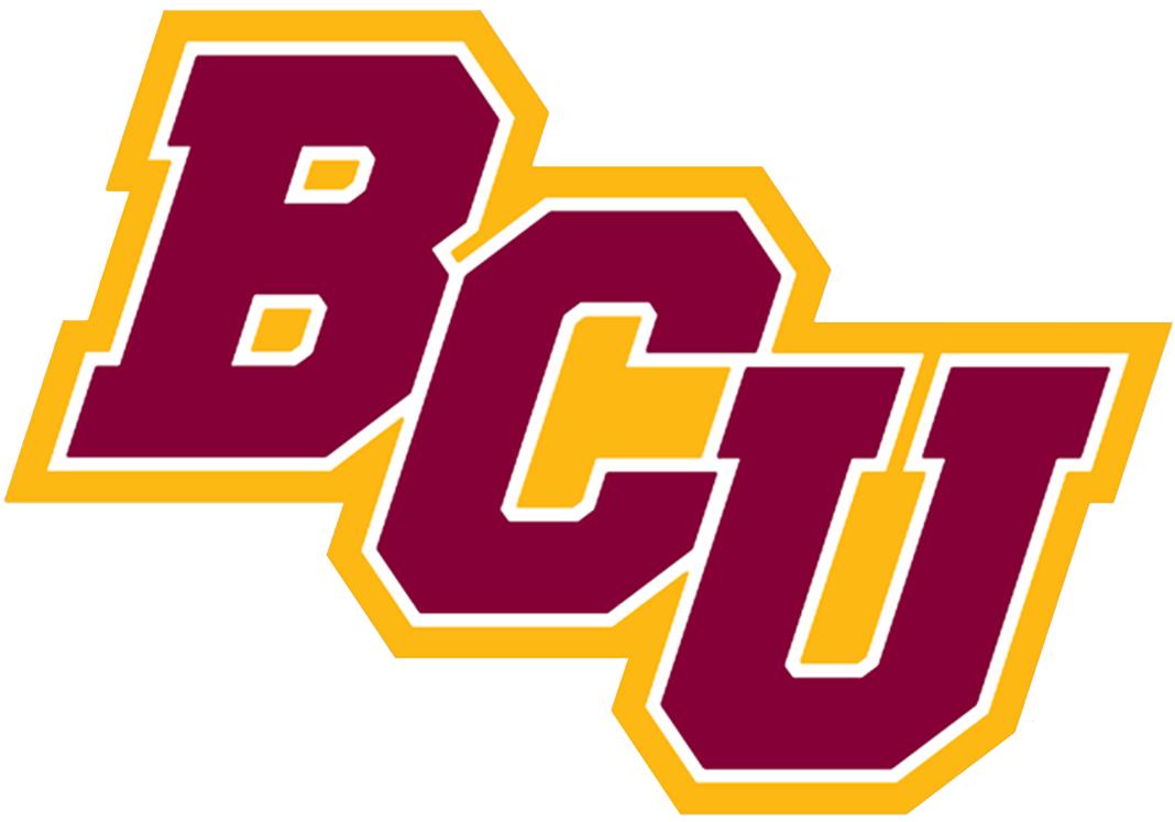 Bethune Cookman Wildcats Secondary Logo 2016 Logos College Logo Wild Cats