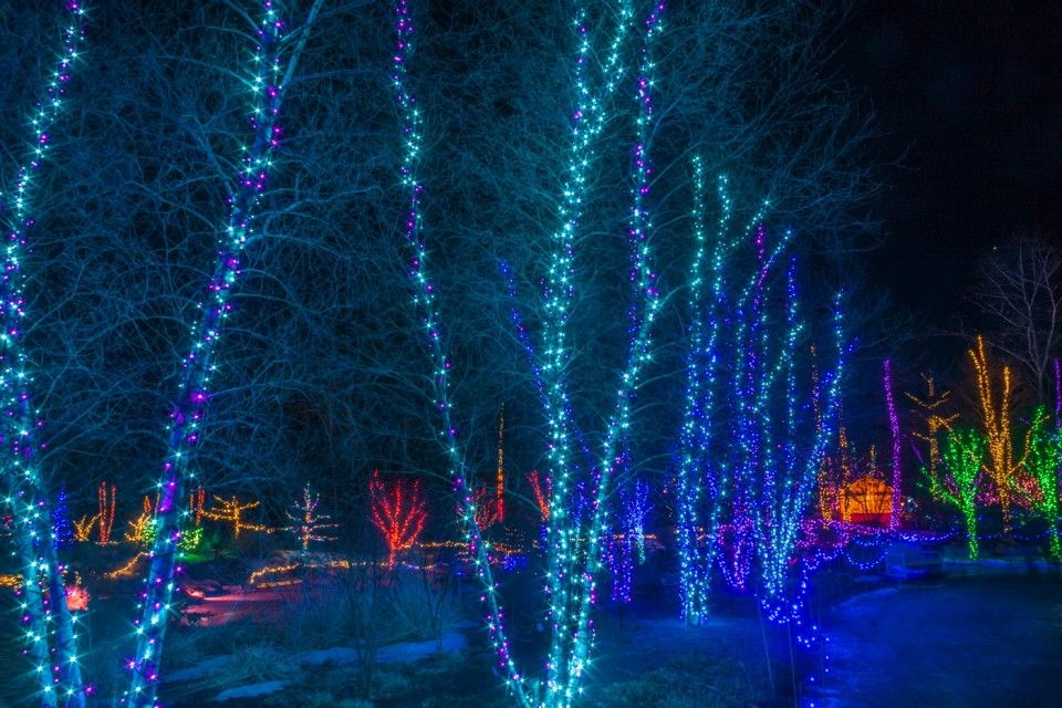 Top Notch Christmas Lights Nj In 2020 Holiday Lights Christmas Lights Hanging Christmas Lights