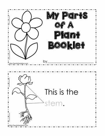 parts of a plant worksheet plantas pinterest worksheets plants and parts of a plant. Black Bedroom Furniture Sets. Home Design Ideas