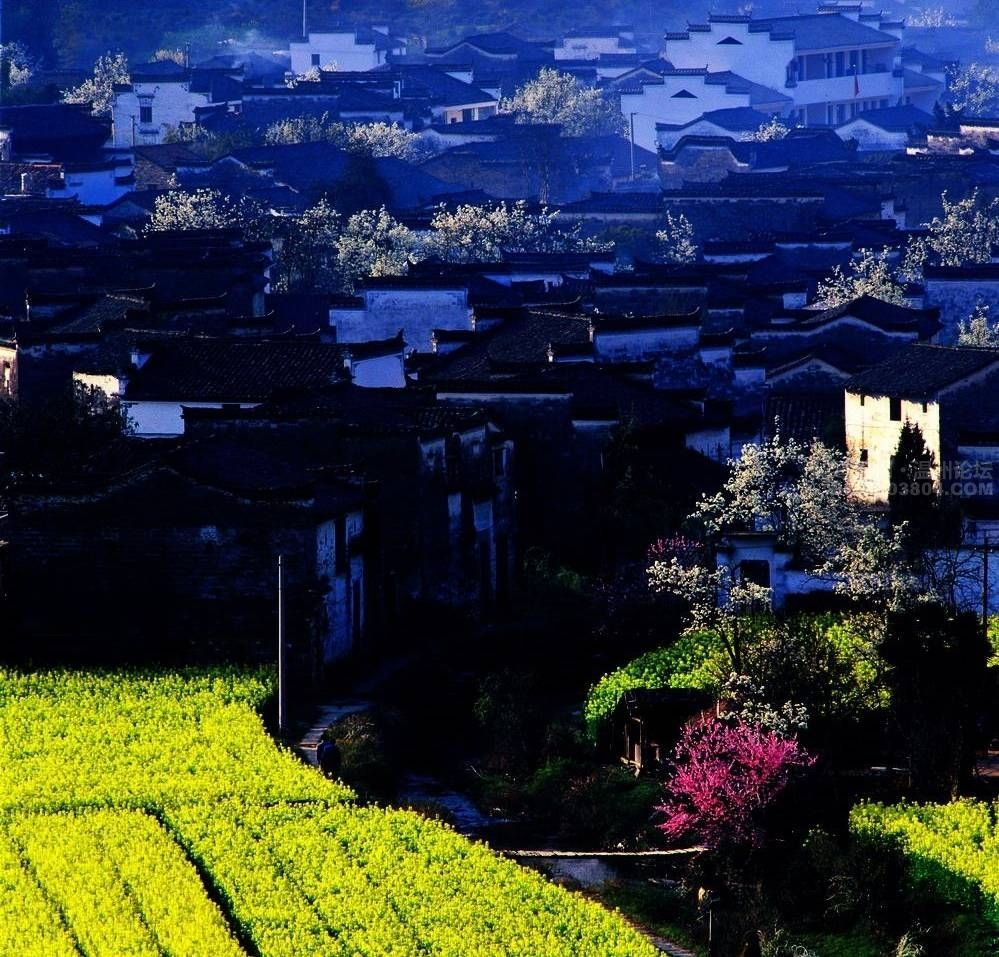 PAKISTAN, village life of Punjab, Pakistan | Village