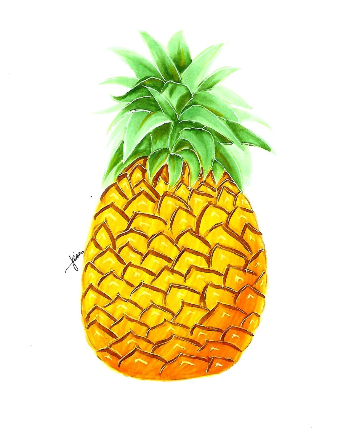 NEW Original fruit pineapple drawing modern art painting copic art ...