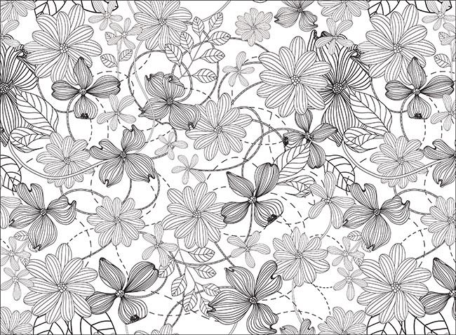 Zen Colouring BOTANICALS Free Printables