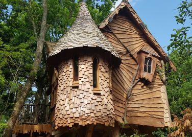 Blackberry Wood   maisonnette   Pinterest   Blackberry, Woods and ...