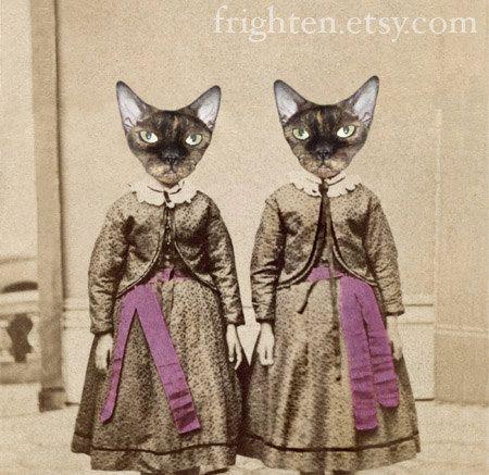 Devon Rex Cat Art Twin Sisters Mixed Media Collage by frighten, $25.00