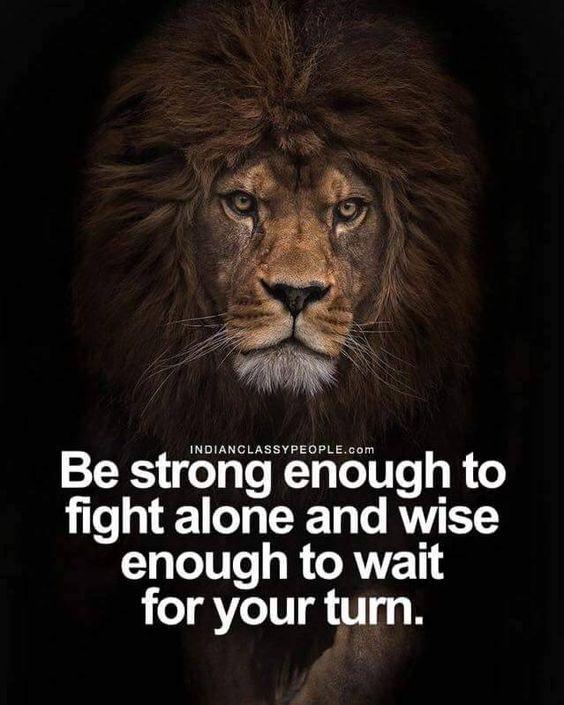 #motivation #motivational #inspire #inspirational #youarethestorm #storm # Motivate #lion