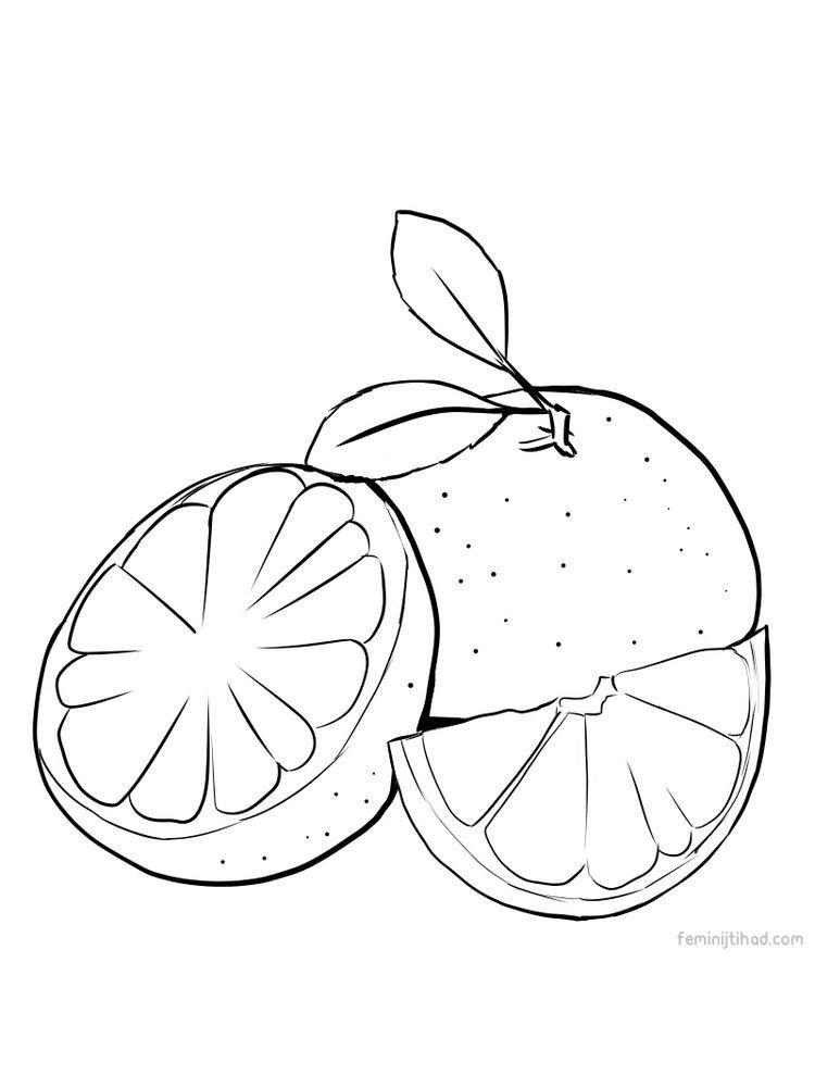 Grapefruit Riscos Para Pintura Artesanal