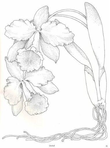 Risco Flor Flores Artesanato Pintura Em Tecido Modelo