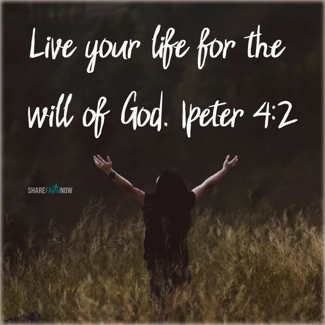 Bible VersesLive your life for the will of god. Bible
