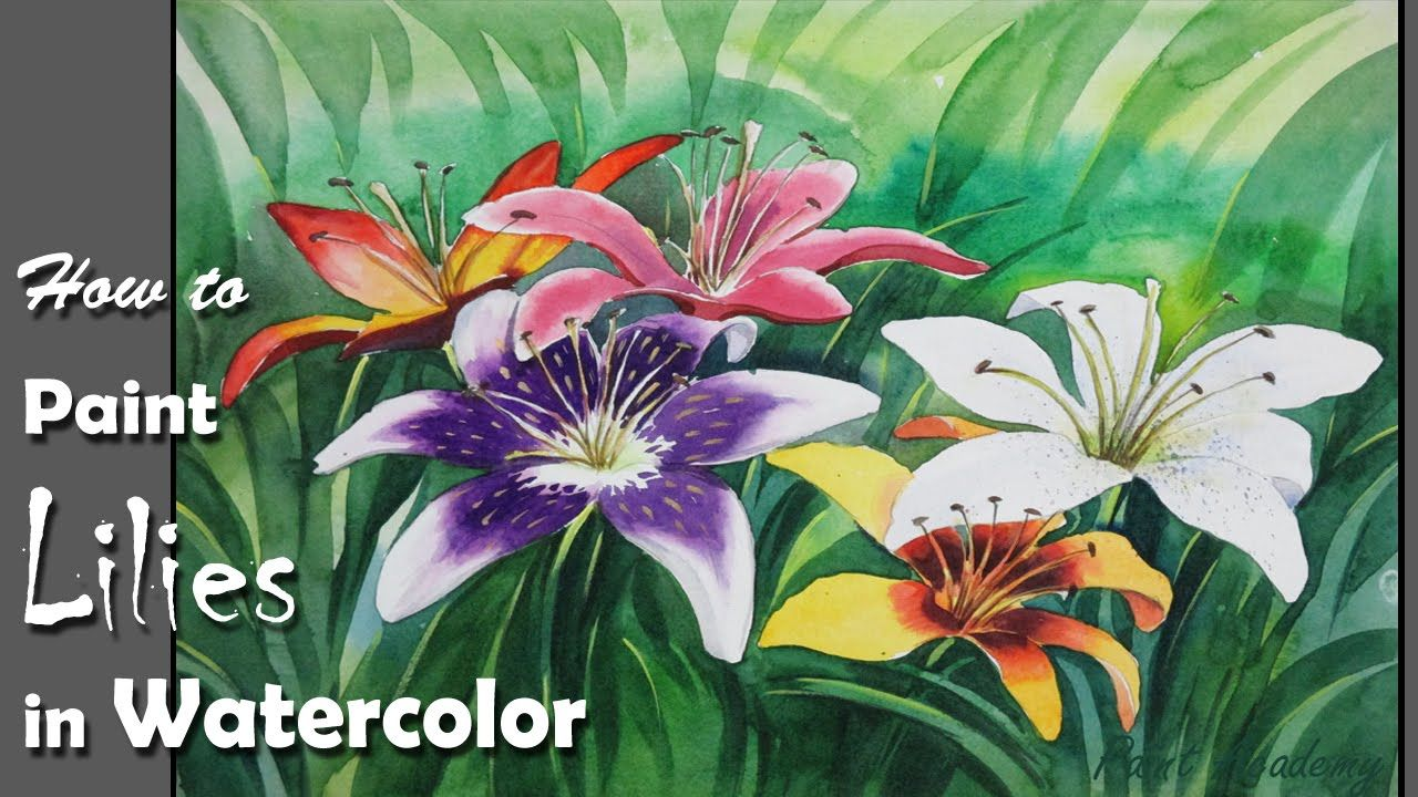 How to paint lily flowers in watercolor art flowers in watercolor how to paint lily flowers in watercolor izmirmasajfo