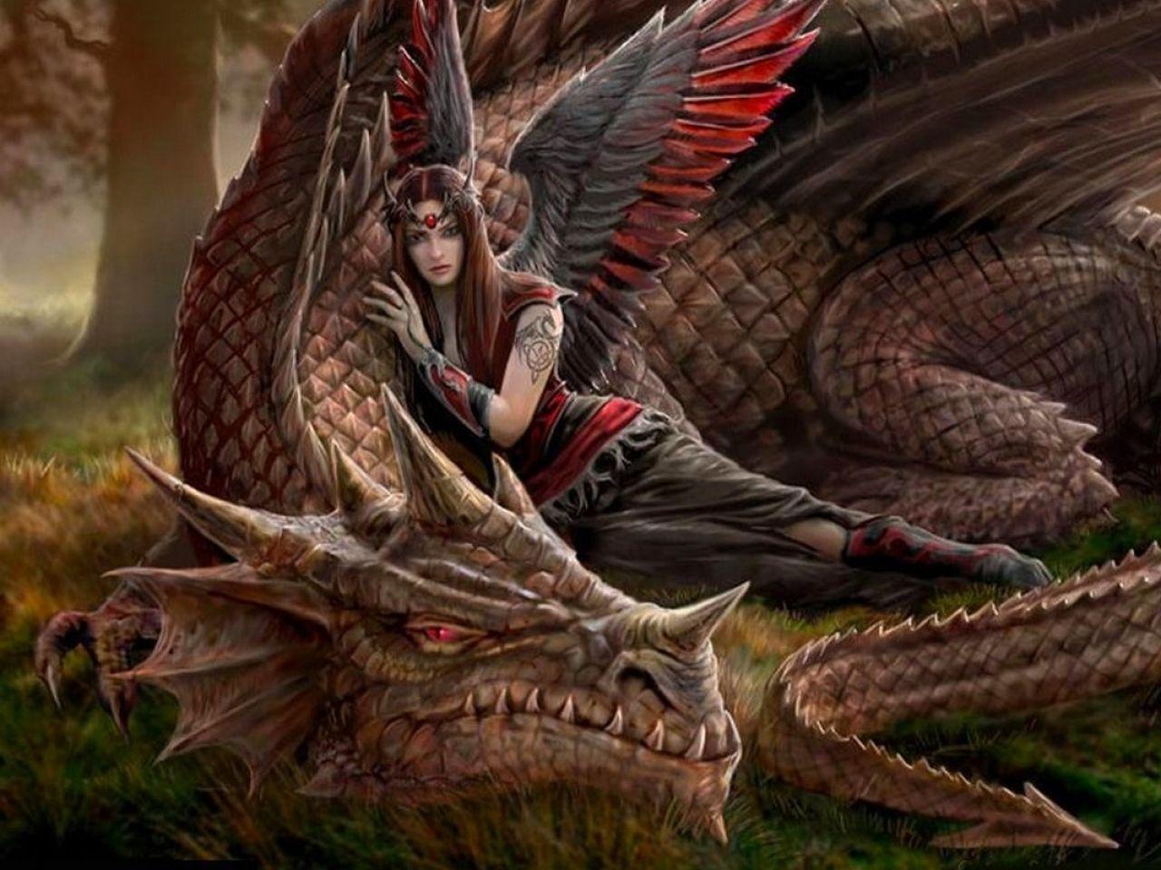 Free Dragon Art Wallpaper Dragons Fantasy Art 1280x800 Wallpaper Wallpaper Free Wallpapers Fairy Dragon Dragon Pictures Fantasy Dragon