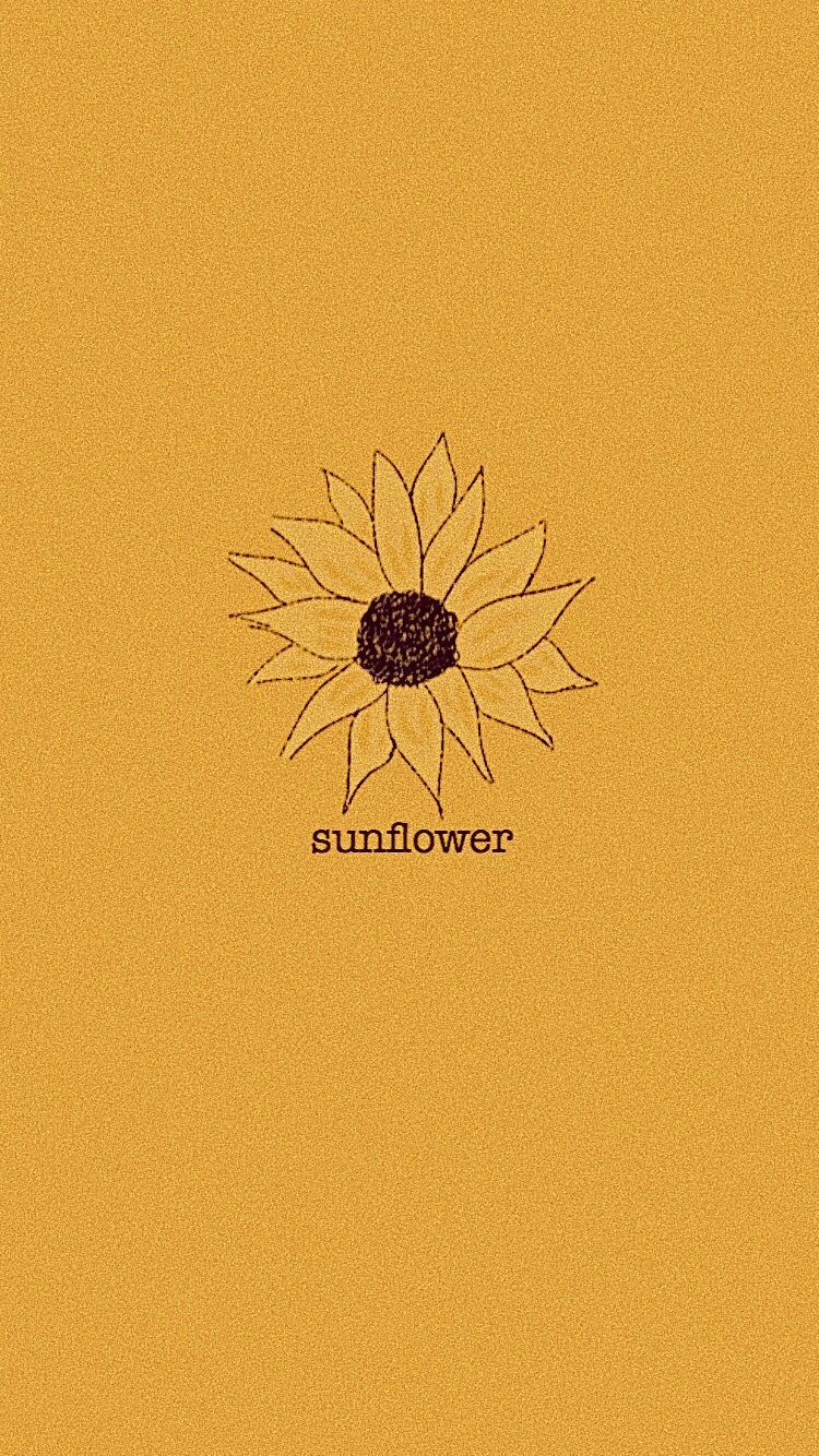Yellow Aesthetic Sunflower Wallpaper Sunflower Wallpaper Yellow Aesthetic Pastel Cute Flower Wallpapers