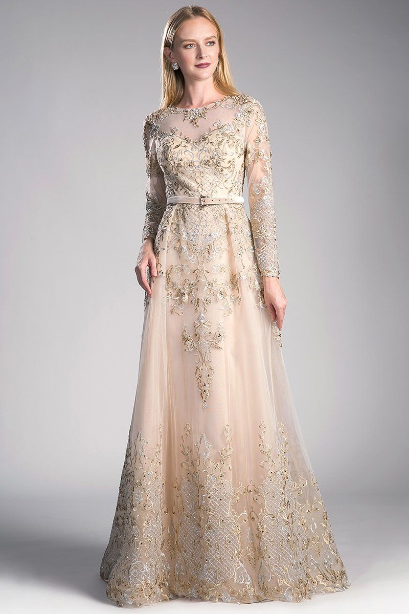 Light golden sheer overlay aline gown with floral embroidery