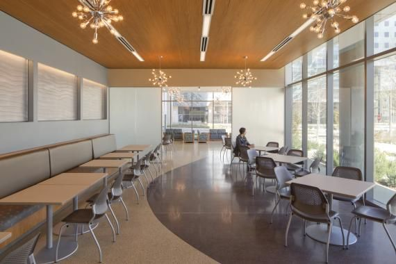 The First Floor General Waiting Area Features Lots Of Natural Light And Eye Catching Light