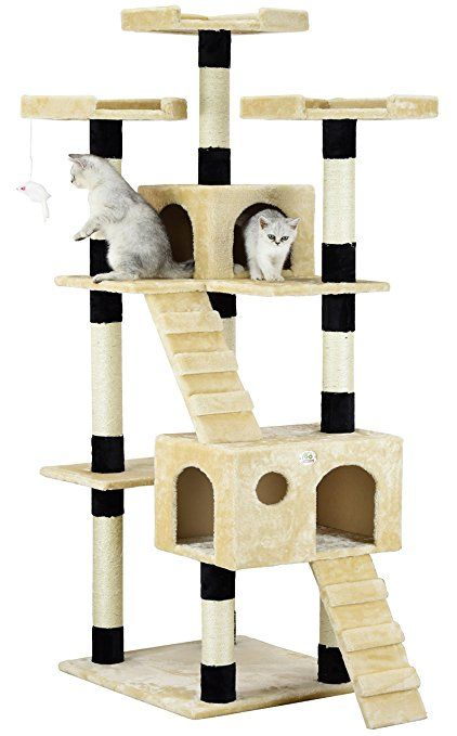 10 Best Cat Trees For Maine Coons 2018 [Cat Trees for