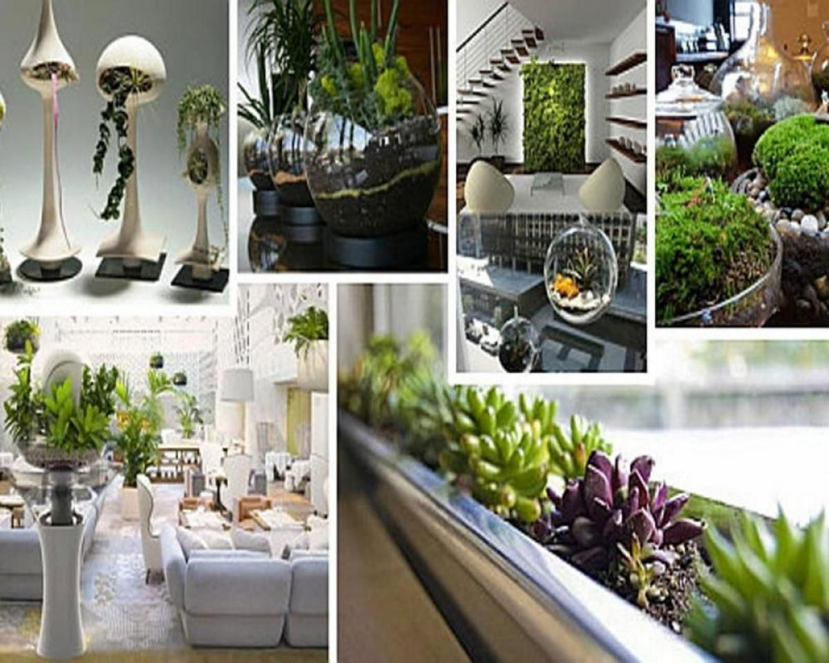Amusing Indoor Garden With Green Plant Decoration Ideas Jpg 1200