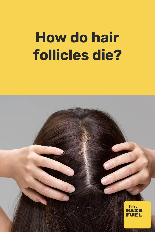 What stimulates facial hair growth