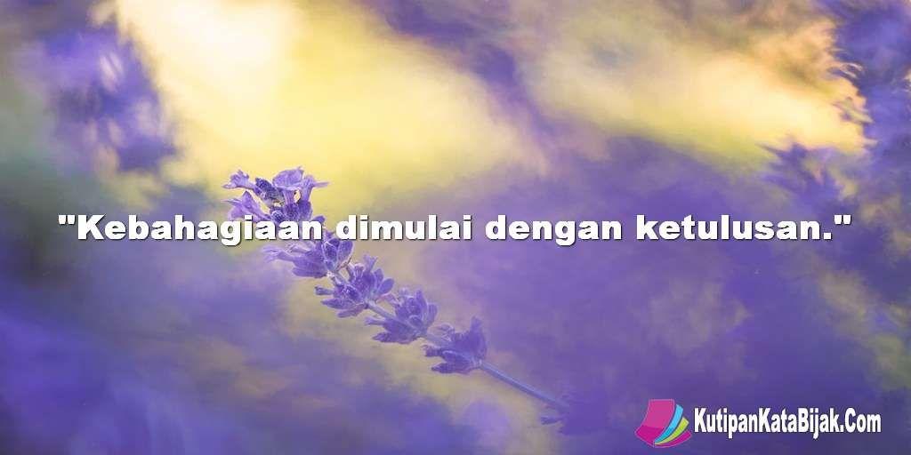 Kutipan Kata Kata Motivasi Kebahagiaan Dimulai Dengan