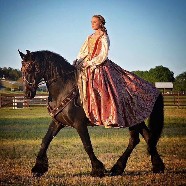 Friesian   Medieval horses and fashion   Medieval horse