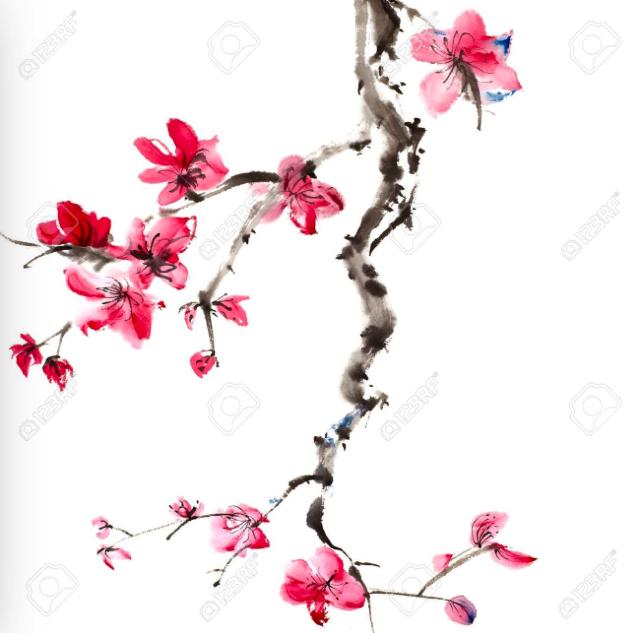 Aquarelle fleurs de cerisier recherche google fleurs de cerisier pinterest fleur de - Cerisier en fleur dessin ...