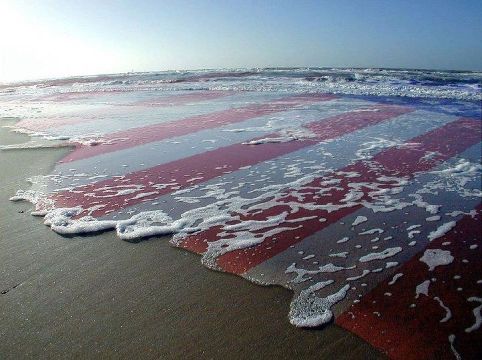 These colors don't run. Happy Memorial Day.  Remembering our Hero's who paid the ultimate price for our freedom.