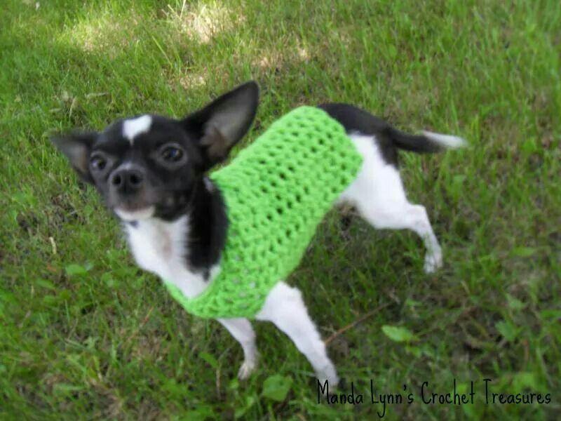 Pin de Analia Muñoz en Ropa y accesorios para perros. | Pinterest ...