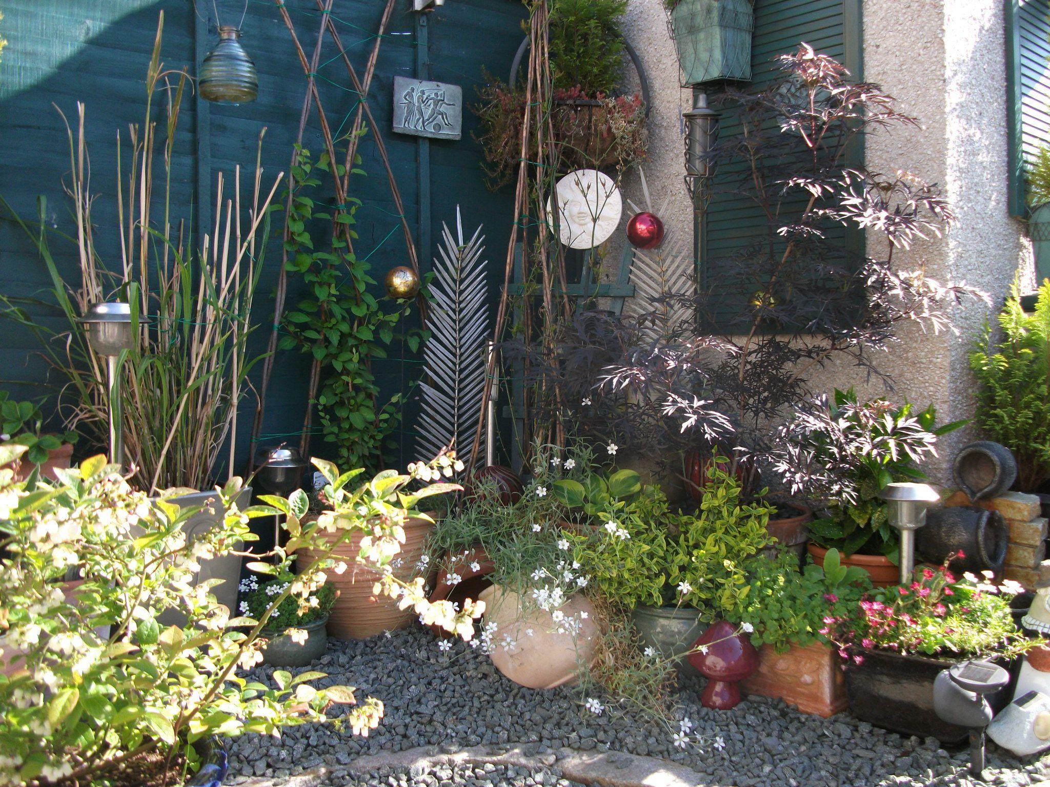 Garden Ideas Scotland shady corner in small scottish garden! | gardening | pinterest