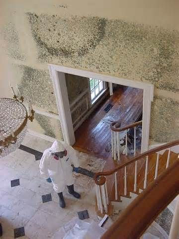 Our Professional Mold Removal Hartford Technicians Will Remove Mold Safely And Ensure Your Home Is Mold Free And Saf With Images Secret Rooms Mold Remover Mold Remediation