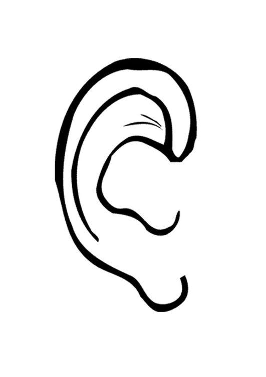 Coloring Page Ear Kleurplaten Oor Lichaamsdelen