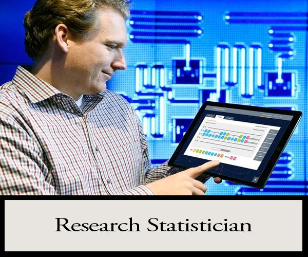 Research Statisticians Air Quality Data Analysts provide