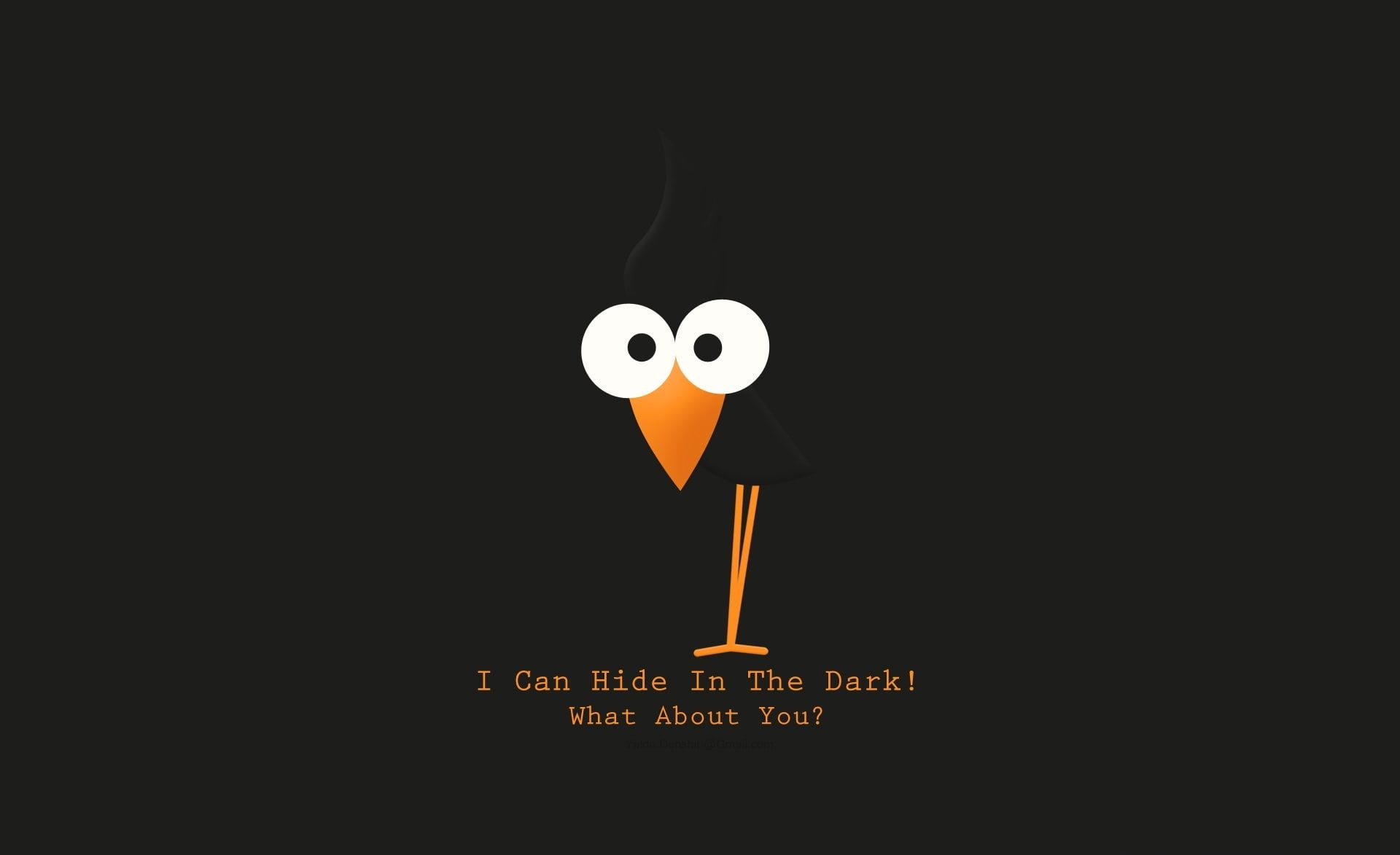 I Can Hide I Can Hide In The Dark What About You Digital Wallpaper Funny Bird Funny Cartoon Funny Quotes Wallpaper Funny Wallpapers Funny Wallpaper