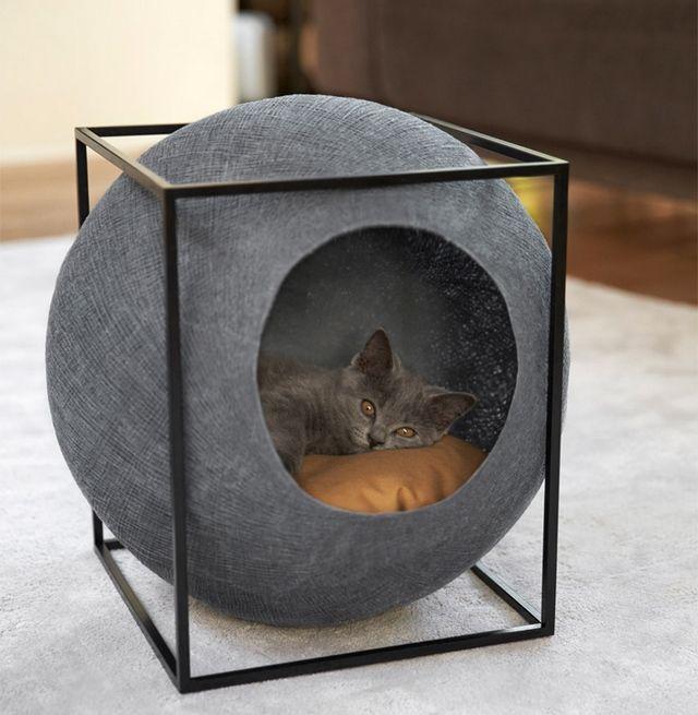 Le cube la pureté de la forme graphique la douceur dune bulle de coton tissé un vrai territoire pour votre chat un petit cube confortable dans lequel