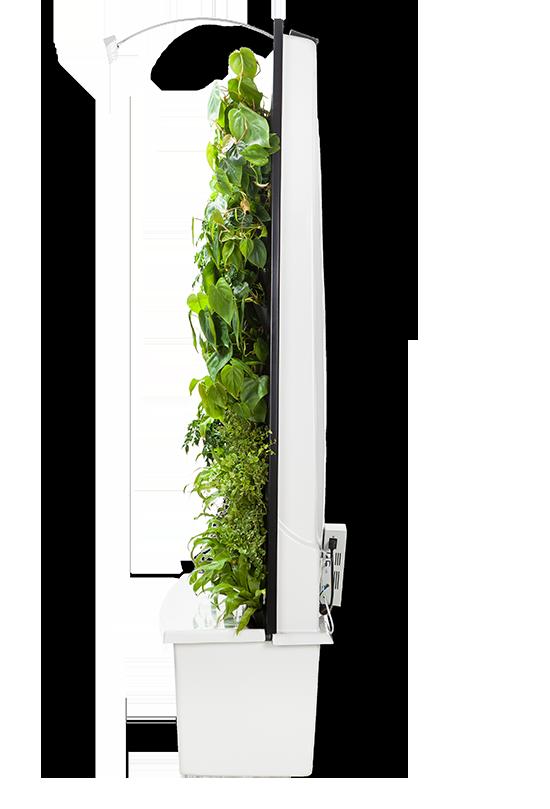 Naava Original Pivot 0005 Sivu Vasen Png Vertical Garden Vertical Garden Indoor Vertical Garden Wall