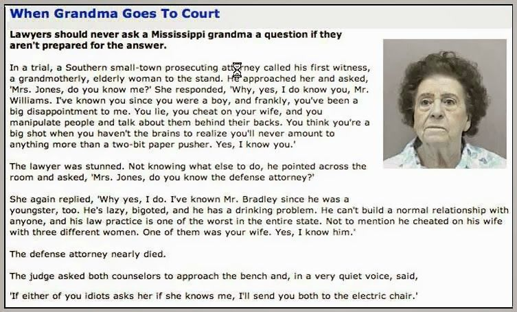 Oh, No! Mama's Off Her Meds, Again.: When Grandma Goes To Court
