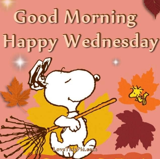 Good Morning Snoopy Wednesday : Good morning happy wednesday snoopy and woodstock