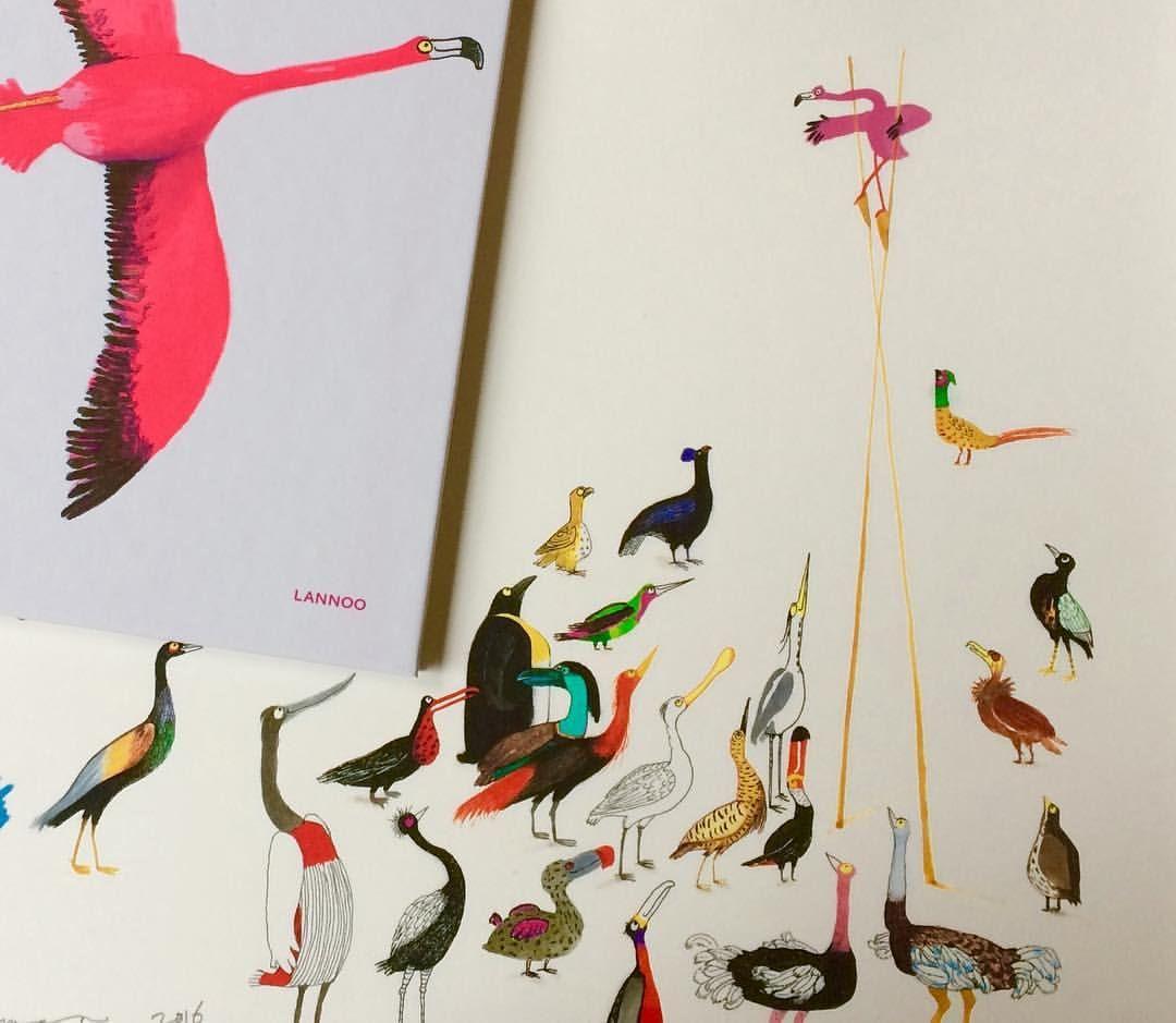 """78 Likes, 7 Comments - Marije Tolman (@marijetolman) on Instagram: """"gevederde vrienden #flamingo #birds #lannoo #kimcrabeels #marijetolman #picturebook #prentenboek…"""""""