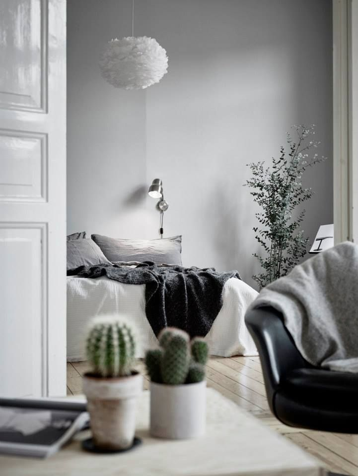 Black And White Bedroom With Modern Light Fixture, Cozy Gray Bedding,  Indoor Plants, And Cactus