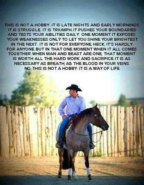 ♥ people really need to start thinking about the horse industry in this way.