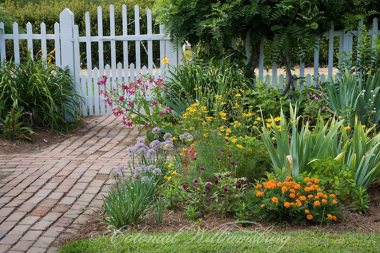 Historic Taliaferro-Cole Garden with fence in Summer Colonial Williamsburg, Virginia. Photo by David M. Doody