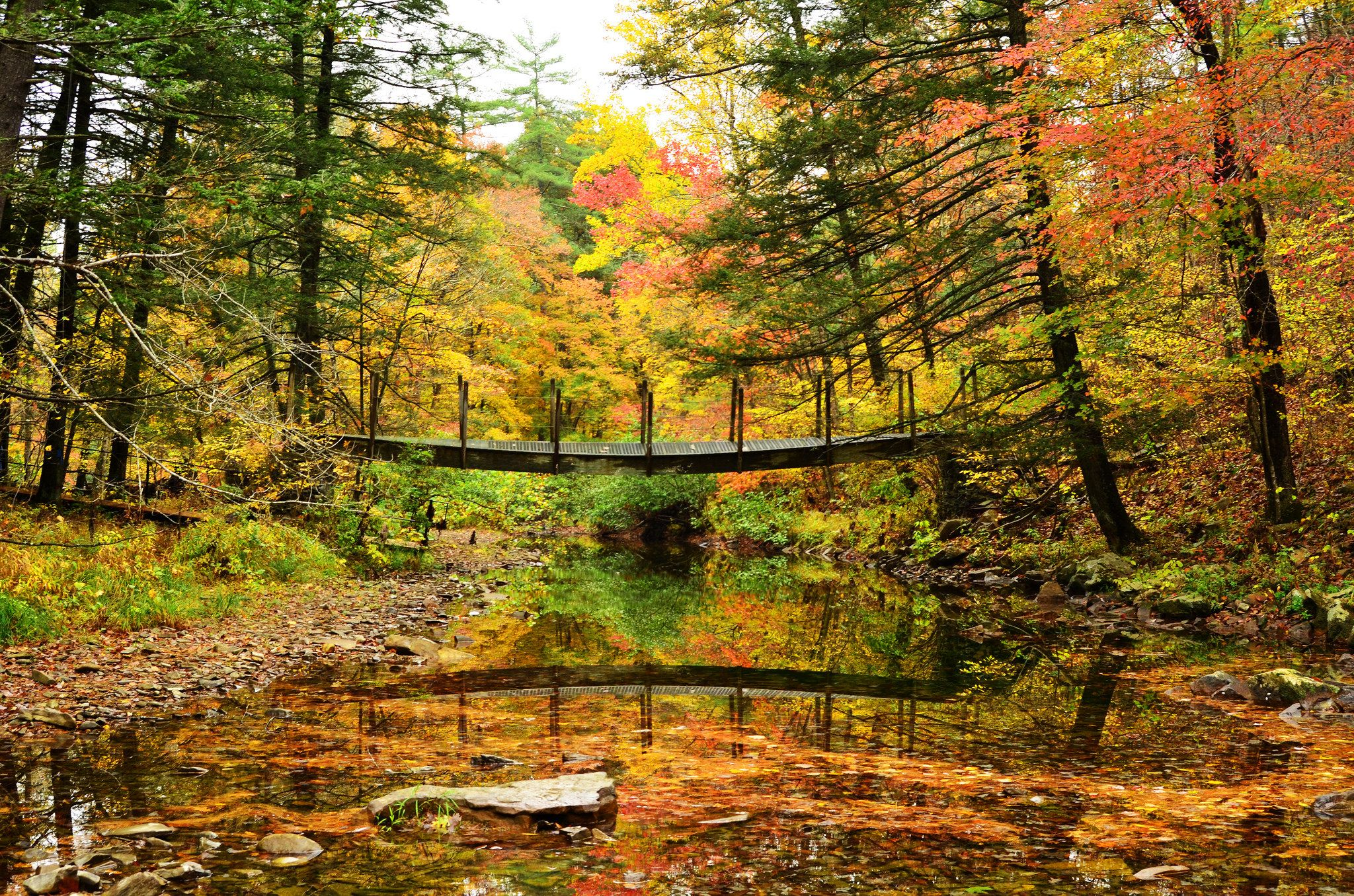 Rickety Bridge | Fifteen Mile Creek, Green Ridge State Forest, MD | Fall vacations, Scenery, Fall colors