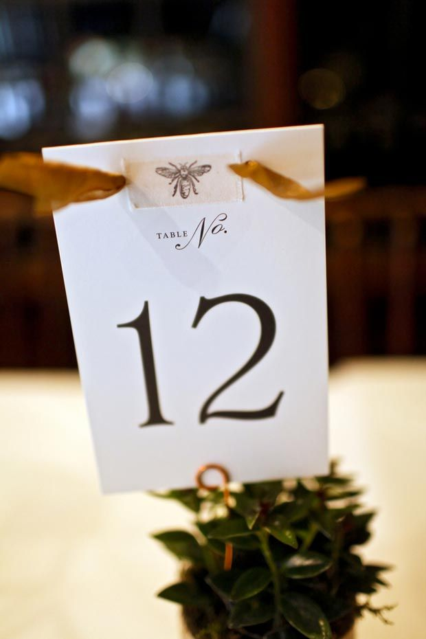 Rustic wedding at log haven weddings in salt lake city utah table number card attached to pine cone rustic wedding ideas pepper nix photography wedding wishes wedding guide m4hsunfo