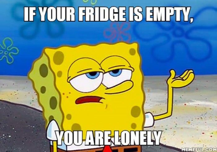 If your fridge is empty, you are lonely. Meme