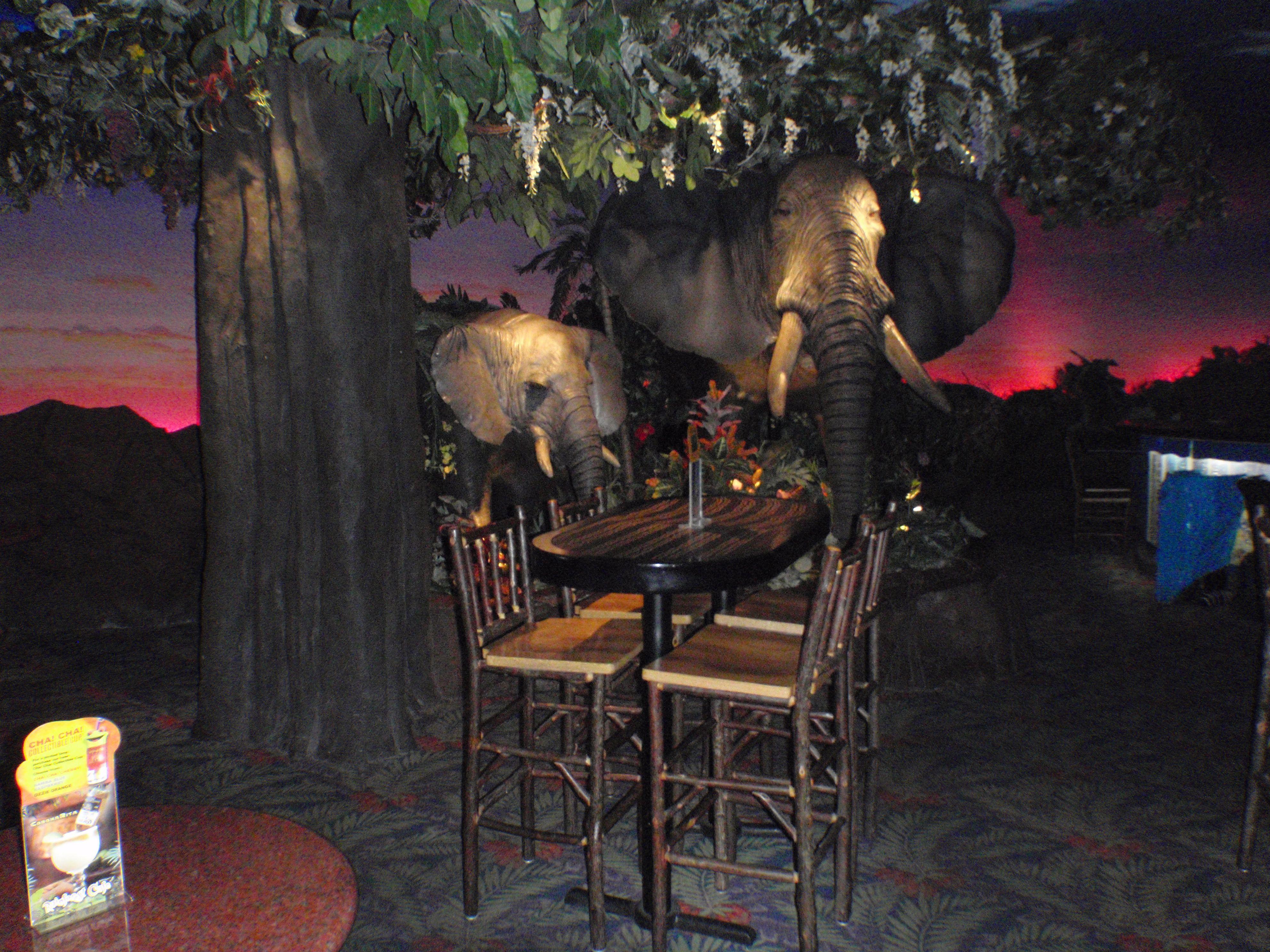 Ved Fisherman's Wharf på Jefferson Street finder man et unikt madkoncept, som er et besøg hver for både børn og barnlige sjæle. Her sidder du midt i en kunstig regnskov omgivet af tropiske dyr, som siger lyder og bevæger sig. Retter som f.eks. Rumble in the Jungle Turkey wrap er på menuen. Et virkelig gennemført koncept!