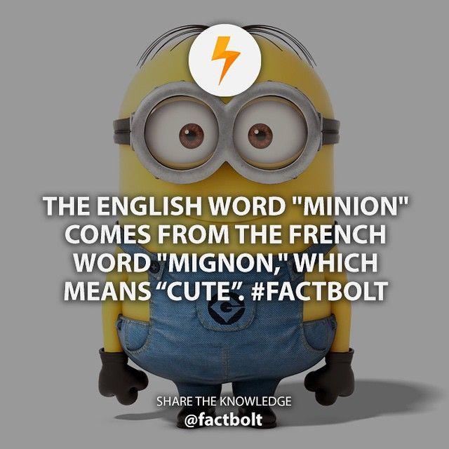 - Source: (wiktionary) http://bit.ly/mignoncute - #fact #factbolt