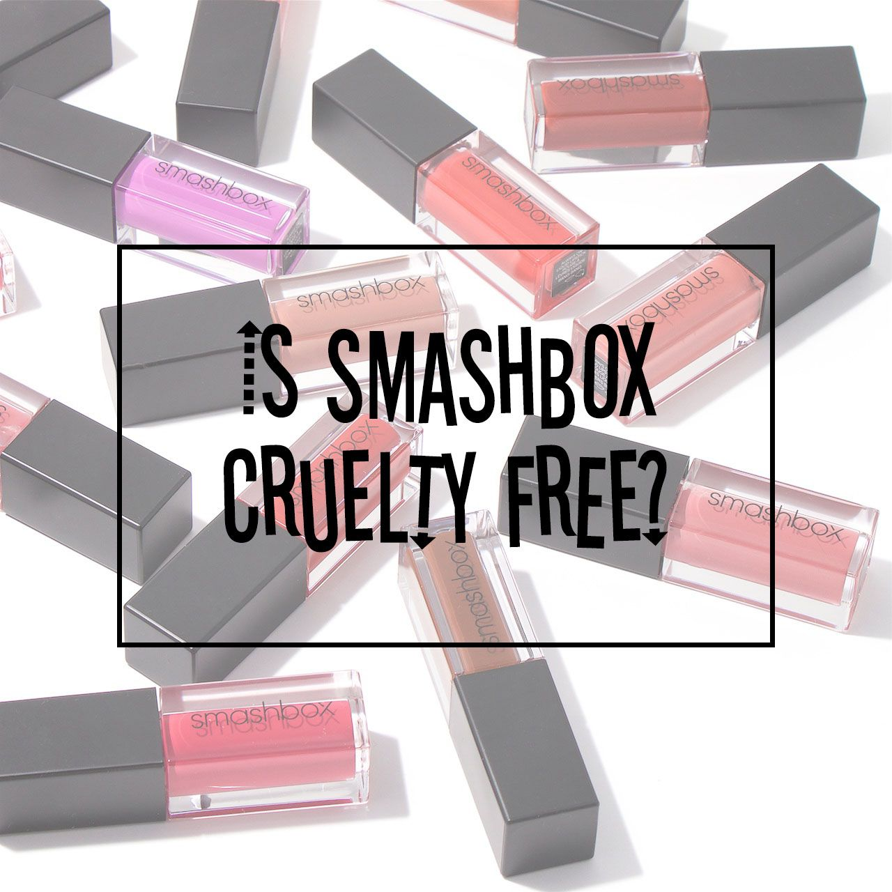 Is Smashbox Cruelty Free Cruelty Free Cruelty Free Beauty Smashbox